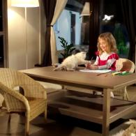 Рекламный ролик для компании Чемпион Комфорта